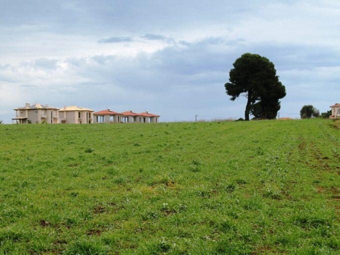 Продажа - Земельный участок 8200 кв.м, Кассандра, Халкидики, Греция