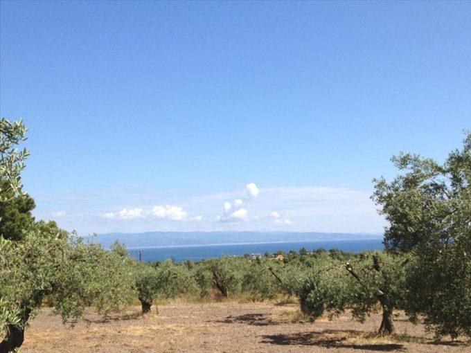 Продажа - Земельный участок 12100 кв.м, Ситония, Халкидики, Греция