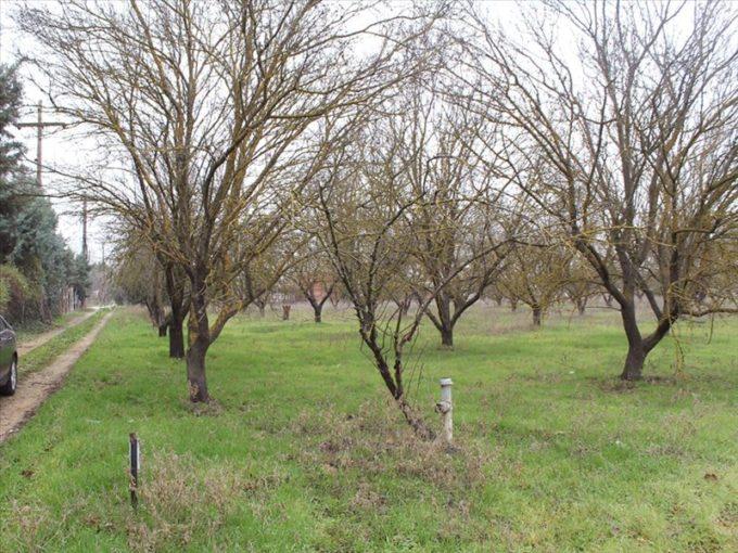 Продажа - Земельный участок 7500 кв.м, Ханья, Ханья, Греция