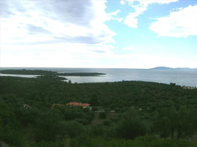 Продажа - Земельный участок 16728 кв.м, Ситония, Халкидики, Греция
