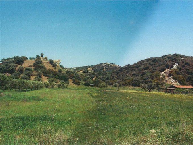 Продажа - Земельный участок 0 кв.м, Афон, Халкидики, Греция