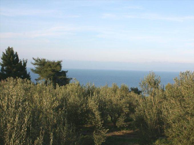 Продажа - Земельный участок 20000 кв.м, Кассандра, Халкидики, Греция