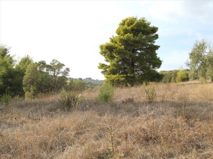 Продажа - Земельный участок 4000 кв.м, Кассандра, Халкидики, Греция