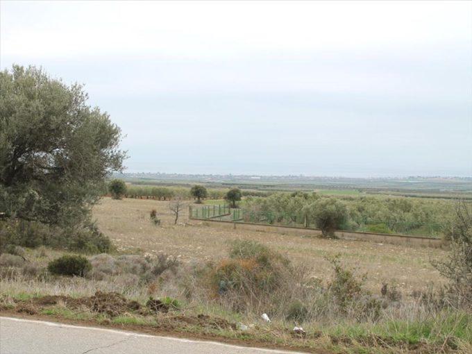 Продажа - Земельный участок 12694 кв.м, Ситония, Халкидики, Греция