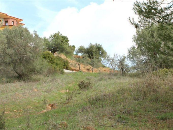 Продажа - Земельный участок 3840 кв.м, Ситония, Халкидики, Греция