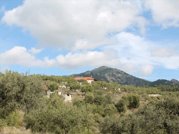 Продажа - Земельный участок 4620 кв.м, Ситония, Халкидики, Греция