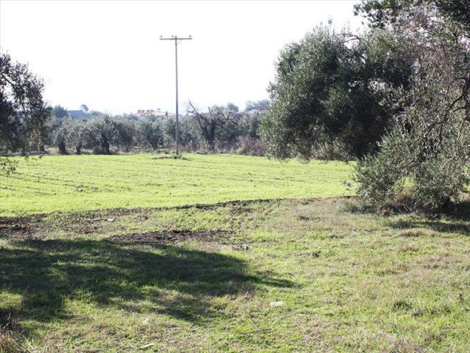 Продажа - Земельный участок 2500 кв.м, Ханья, Ханья, Греция