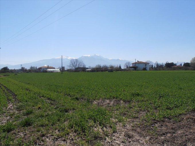 Продажа - Земельный участок 4000 кв.м, Олимпийская Ривьера, Олимпийская Ривьера, Греция