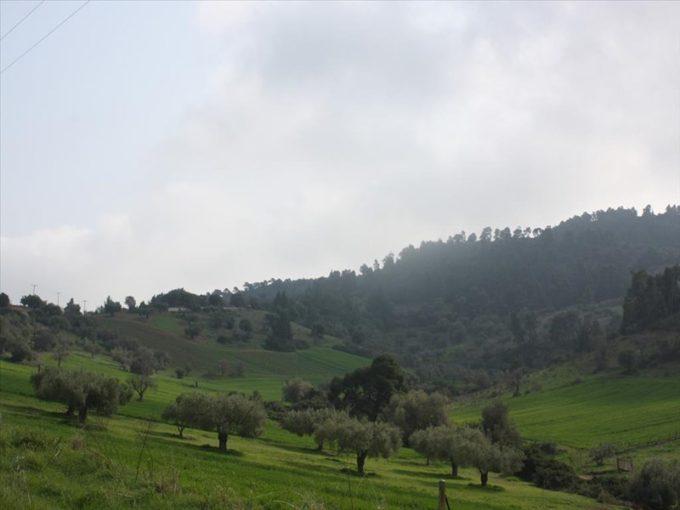 Продажа - Земельный участок 4100 кв.м, Кассандра, Халкидики, Греция
