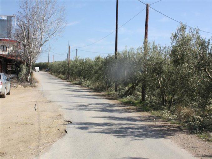 Продажа - Земельный участок 8880 кв.м, Кассандра, Халкидики, Греция