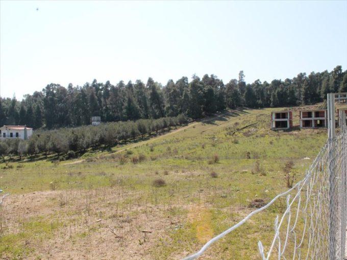 Продажа - Земельный участок 8000 кв.м, Кассандра, Халкидики, Греция