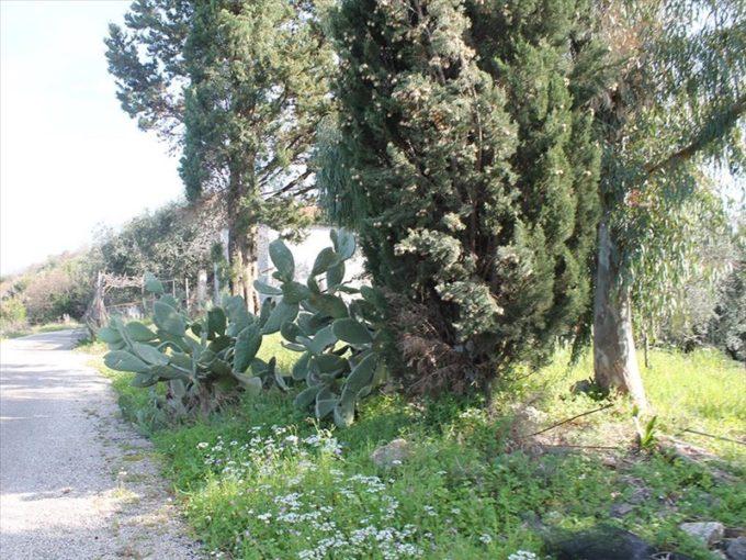 Продажа - Земельный участок 5123 кв.м, Керкира, Керкира, Греция