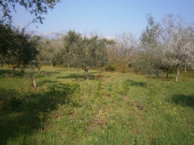 Продажа - Земельный участок 600 кв.м, Потамия, Кавала, Греция