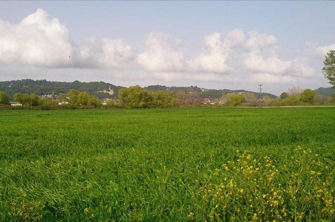Продажа - Земельный участок 9861 кв.м, Кассандра, Халкидики, Греция