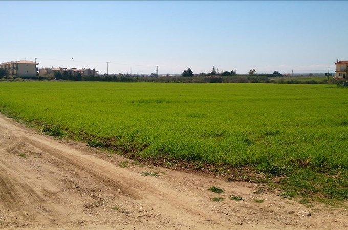 Продажа - Земельный участок 8800 кв.м, Кассандра, Халкидики, Греция