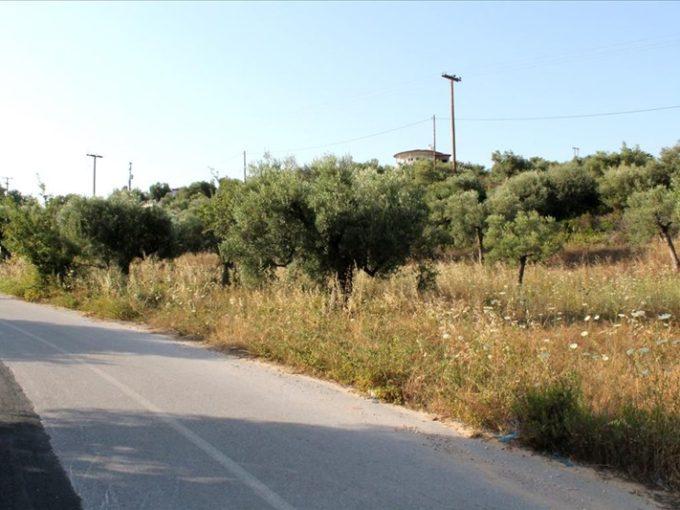 Продажа - Земельный участок 8000 кв.м, Ситония, Халкидики, Греция
