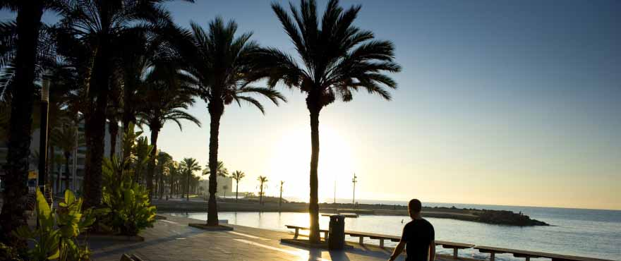 C11_Torrevieja_paseo
