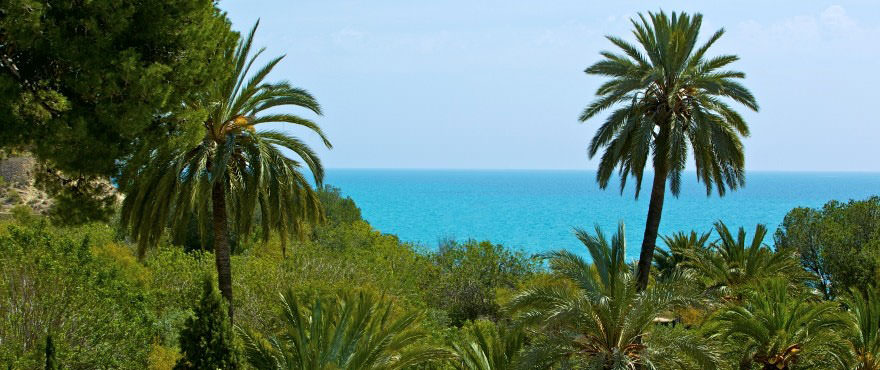 C3_Vila_Paradis_Sea_view-880x370